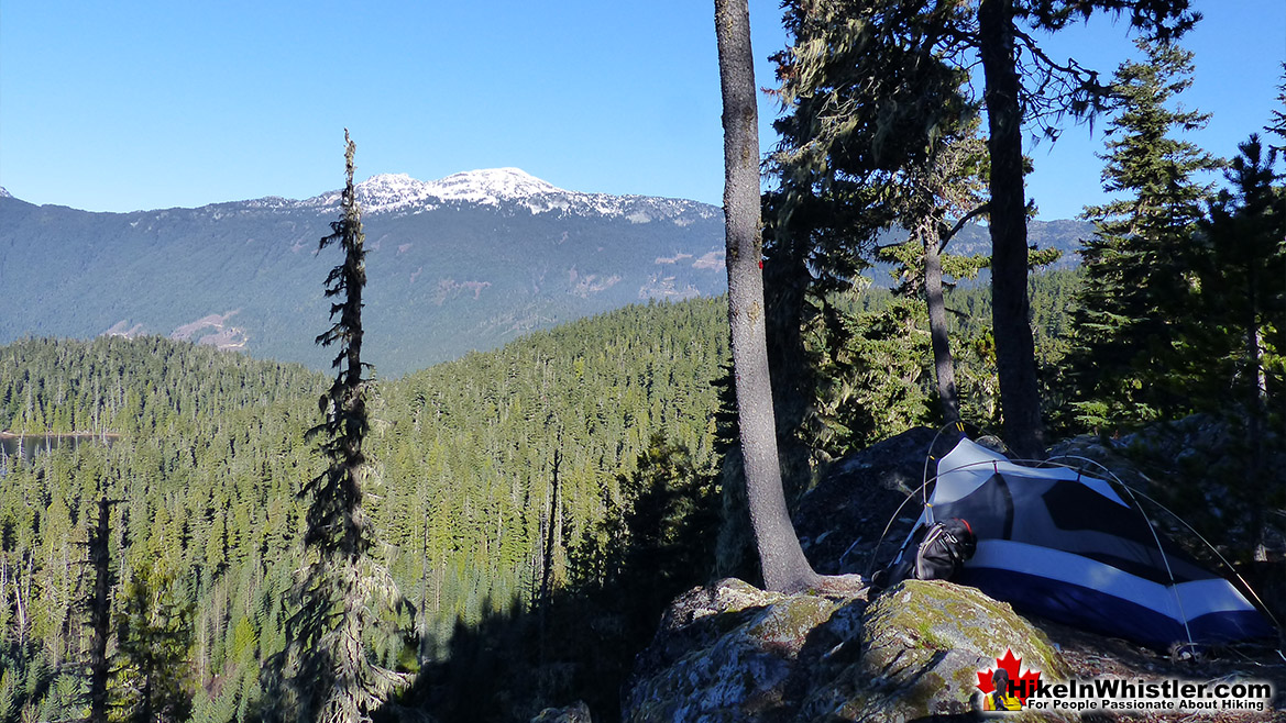Ancient Cedars - Whistler Hiking Trails