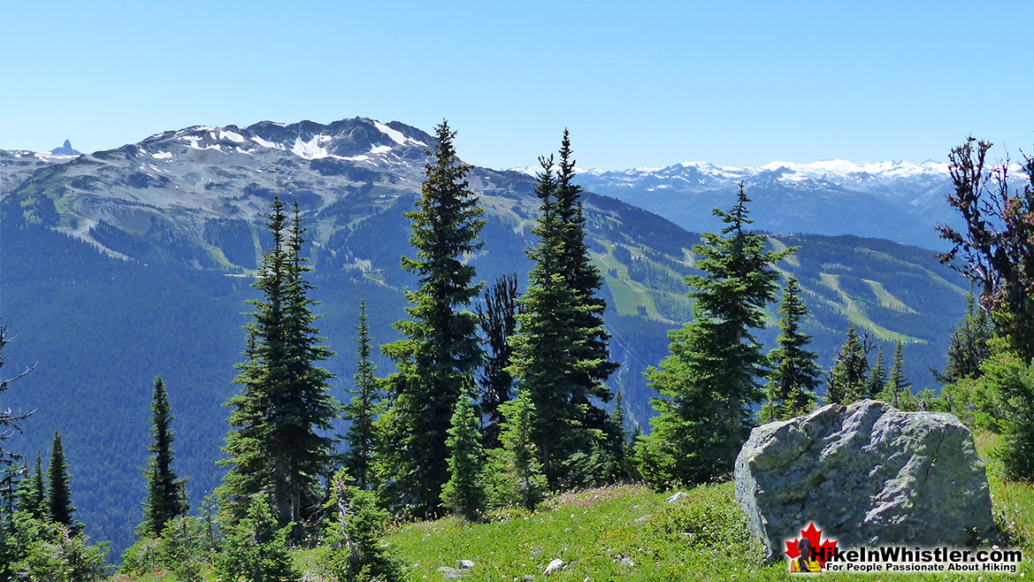 Blackcomb Mountain Hike in Whistler