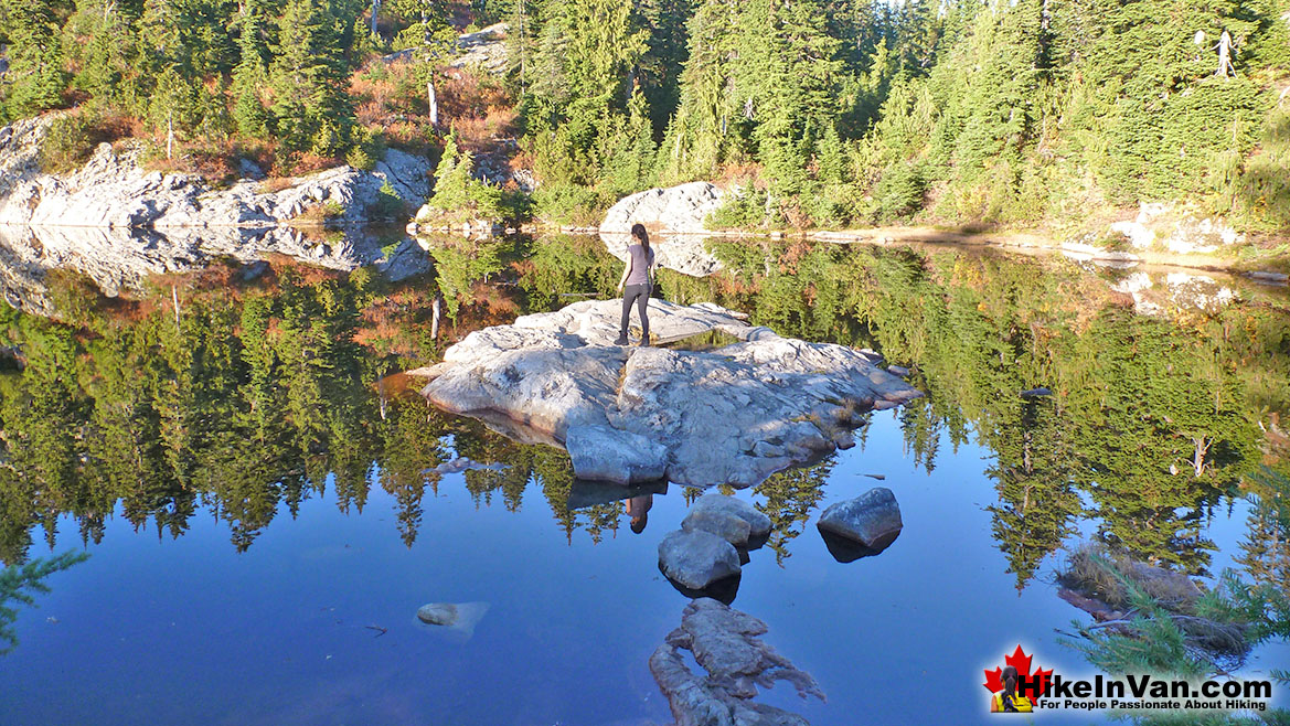 Mystery Lake Hike in Vancouver