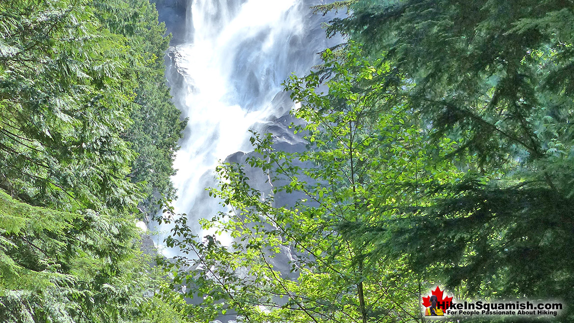 Shannon Falls Hike in Squamish